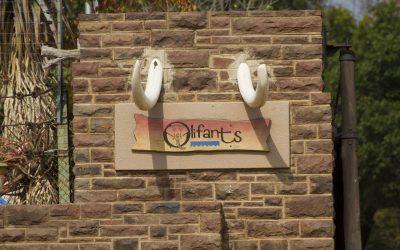 Sudáfrica: hoteles de la ruta.
