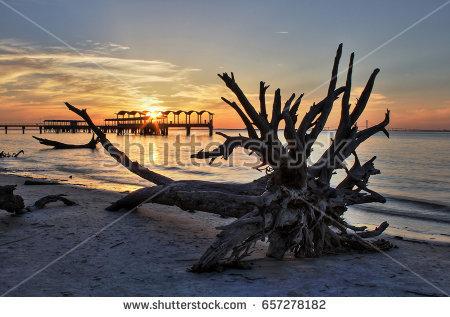 stock-photo-fishing-pier-from-driftwood-beach-jekyll-island-georgia-657278182