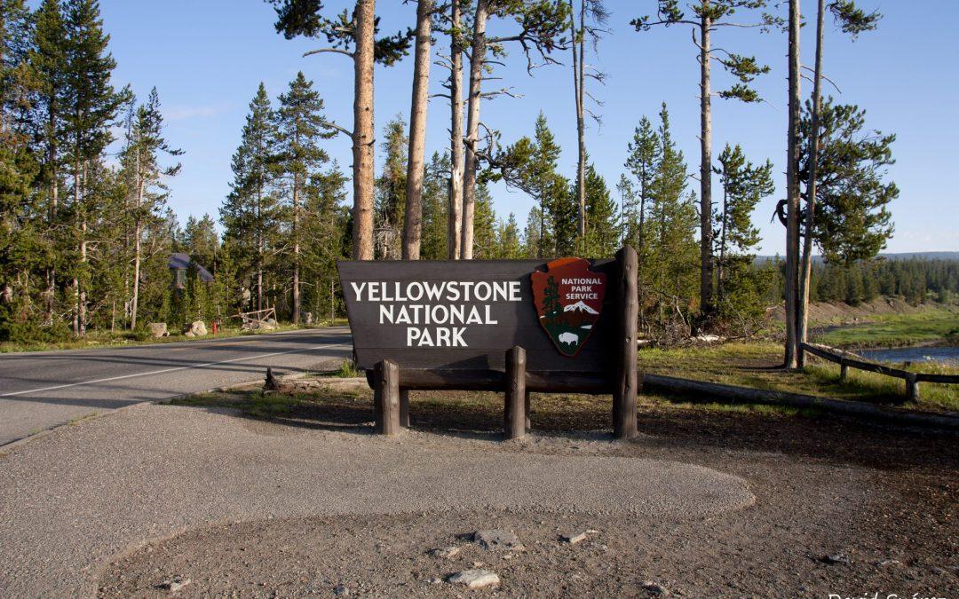 Visita a Yellowstone National Park