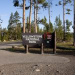 Visita a Yellowstone National Park