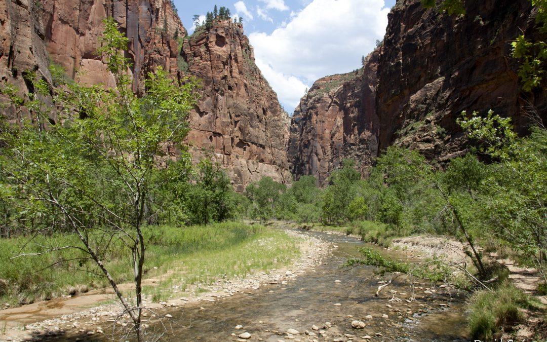 Visita corta a Zion National Park.