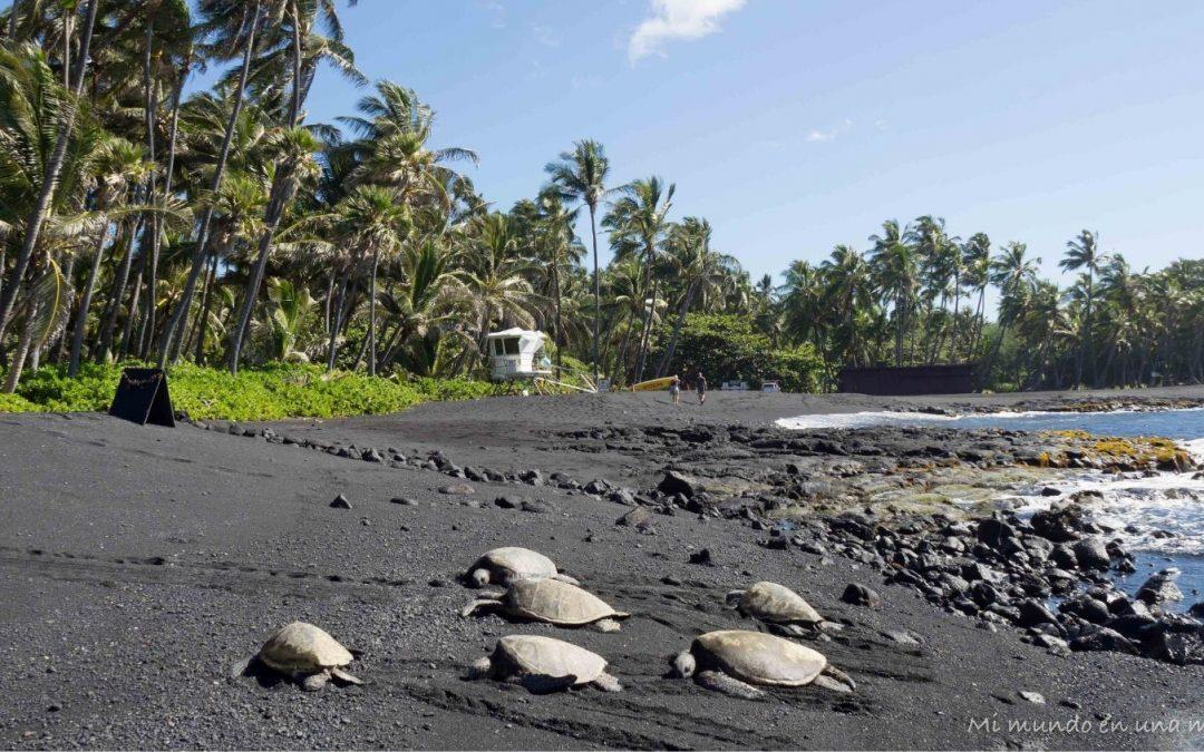 Viajar a Hawaii: información, ruta y presupuesto.