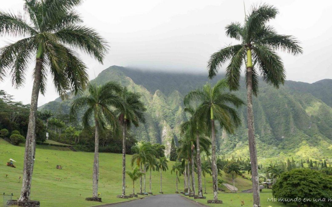 Qué ver y hacer en Oahu, Hawaii.